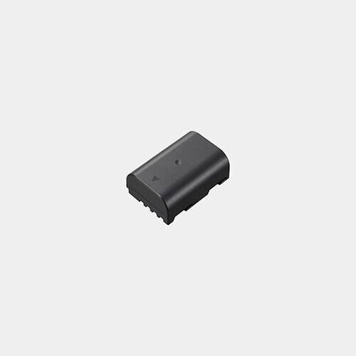 Panasonic DMW-BLF19 Battery Pack