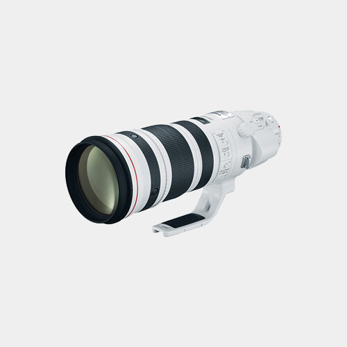 Canon EF 200-400mm f/4L IS w/1.4x Extender