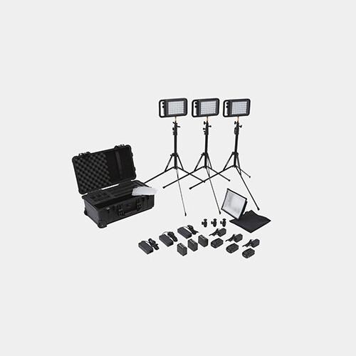 Profoto D1 Air 500 W/S 2 Monolight Kit